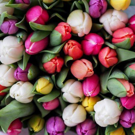 Friss virágok minden nap!